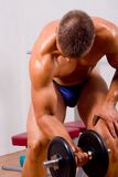 Novice bodybuilder training Stock Photography