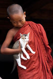Novice and cat. NYAUNG SHWE, MYANMAR MAY 6: Unidentified novice at Shwe Yan Phe Monastery on May 6, 2012 in Nyaung Shwe, Myanmar. Boys at 8-20 years old have to royalty free stock photo