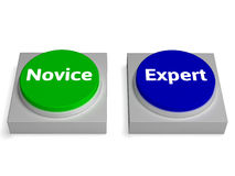 Novice Expert Buttons Shows Beginner And Expertise. Novice Expert Buttons Showing Beginner And Expertise Royalty Free Stock Photography