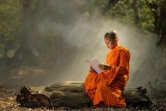 Free Novice Is Learning Religion In Forest. Royalty Free Stock Images - 100349699