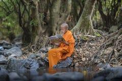 Novice monk learning Royalty Free Stock Image