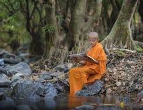 Novice monk learning Royalty Free Stock Photography