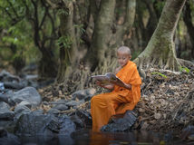 Novice monk learning Stock Photography