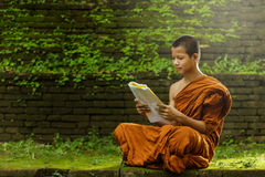 Novice monk learning. In thailand stock photography
