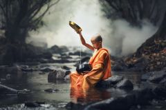 Novice monk royalty free stock photography