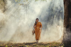Novice monk royalty free stock image