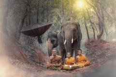 Novice monk stock photo