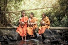 Novice Monk Stock Photos