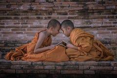 Novice monk royalty free stock image