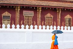 Novice monk walking past ancient temple of Vatsensoukharam, ancient buddhist temple with beautiful mural painting. stock image
