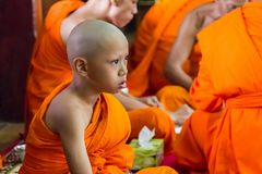 Novice and monks in merit making Stock Image