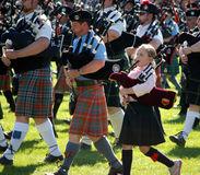 Novice Piper Massed Bands Stock Image