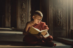 Novice reading book with lighting. In temple,Mandalay,Myanmar stock photos