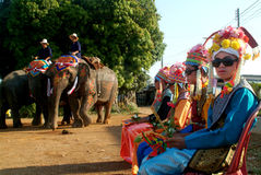 Novice in Si Satchanalai Elephant Back Ordination Proce Stock Photography