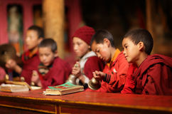 Novices bouddhistes, Ladakh Images libres de droits