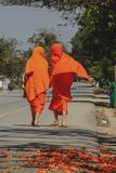 Novices are walking on the street royalty free stock photo