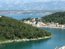 Novigrad, Croazia, farfalla, margherite, campo, bello, lungonmare, città, ricchi, storia immagine stock libera da diritti