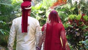 Novio Bride Walk de la opinión de la parte trasera del primer entre las plantas tropicales metrajes