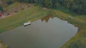 Novio con la novia cerca del lago en el parque Pares de la boda Tiro a?reo metrajes