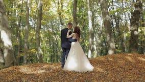 Novio con la novia en el Forest Park Pares de la boda Familia feliz almacen de video