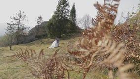 Novio con la novia en el parque Pares de la boda Familia feliz en amor almacen de metraje de vídeo