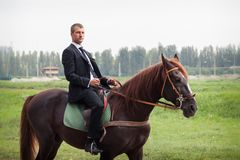 Novio en caballo Imagen de archivo libre de regalías