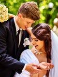 Novio que besa a la novia Foto de archivo libre de regalías