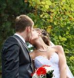 Novio y novia. Imágenes de archivo libres de regalías