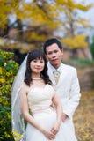 Novio y novia de la felicidad fotografía de archivo libre de regalías