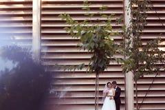 Novio y novia en el parque Fotografía de archivo libre de regalías