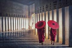 Novis för buddistisk munk som två rymmer röda paraplyer och går i PA royaltyfria foton