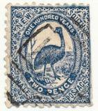 NOVO GALES DO SUL, AUSTRÁLIA - CA 1888 Imagem de Stock