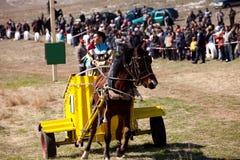 传统保加利亚吉普赛马骑术 库存图片