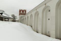 novodevichiy的女修道院 冬日在莫斯科,俄罗斯 免版税库存照片