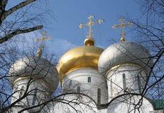 novodevichiy Στοκ φωτογραφία με δικαίωμα ελεύθερης χρήσης