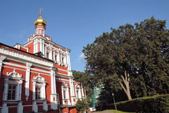 novodevichy的女修道院 库存图片