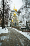 Novodevichy Convent in Moscow Stock Images