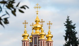 Novodevichy Convent tower. Novodevichy Convent domes with crosses and trees stock image