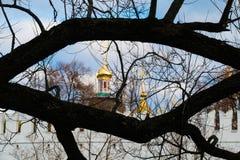 Novodevichy klasztor, drzewo, rancho Zdjęcie Royalty Free