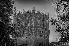 Novodevichy kloster, Bogoroditse-Smolensky klosterMoskva Royaltyfri Fotografi