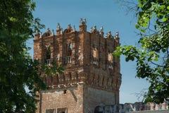 Novodevichy kloster, Bogoroditse-Smolensky klosterMoskva Arkivbilder