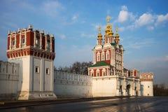 novodevichy klosterotta Arkivfoto
