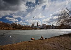 Novodevichy Monastery.Moscow, Russia Stock Images