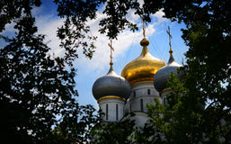 Novodevichy Monastery, Moscow, Russia, Cathedral Domes. The golden, shimmering domes of the cathedral at Moscow& x27;s Novodevichy Monastery emerge from verdant Royalty Free Stock Photos