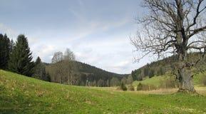 Novohradske hory - hute Stribrne Стоковое Изображение
