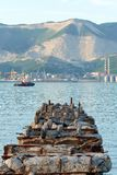 Novorossiysk Black sea. Beautiful colors on the coast in the summer evening royalty free stock photography