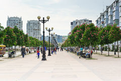 NOVOROSSIYSK, RUSSIA - MAY 08.2016: Chestnut Avenue on the Boulevard Chernyakhovsky, the city of Novorossiysk Stock Image