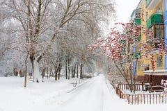 Novosibirsk. Academgorodok. imagens de stock royalty free