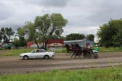 Novosibirsk de entrenamiento raza de 2017 estaciones de caballos del trotón en el campeón regional del circuito de carreras fotos de archivo libres de regalías