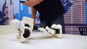NOVOSIBIRSK, RÚSSIA - 21 DE FEVEREIRO DE 2018: Robô do Humanoid que mostra o esporte dos exercícios video estoque